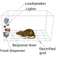 Skinner Box (operant conditioning)